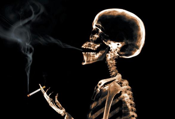 tabaco1